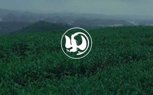 【LOGO设计案例】自然环境孕育的云南品牌