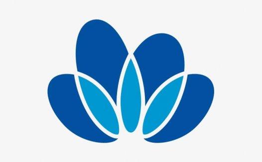 中国中化控股有限责任公司正式揭牌,LOGO设计是朵牡丹花